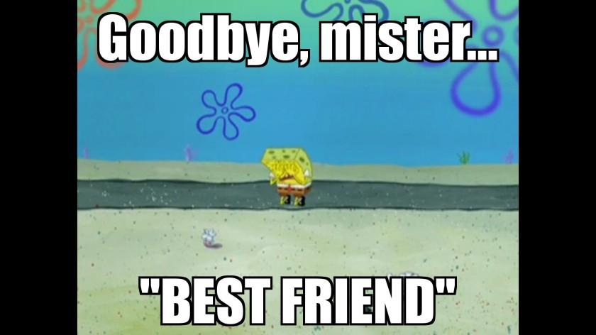 Goodbye Mr Best Friend